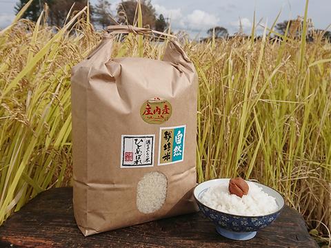 【標準精米 | 10kg】米の旨味たっぷり 自然栽培米 ひとめぼれ
