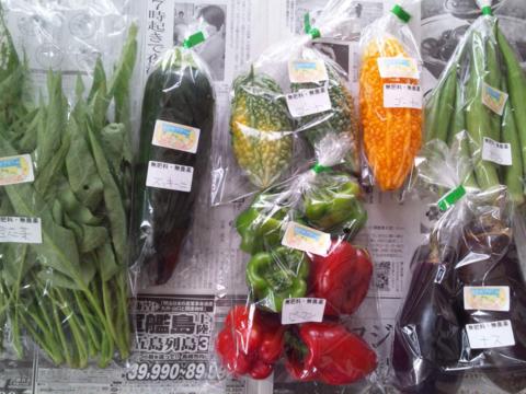 無肥料・無農薬栽培!カラダの中から笑顔になる季節の野菜セット(5-6品)