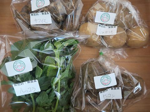 無肥料・無農薬栽培!カラダの中から笑顔になる季節の野菜セット(3品)