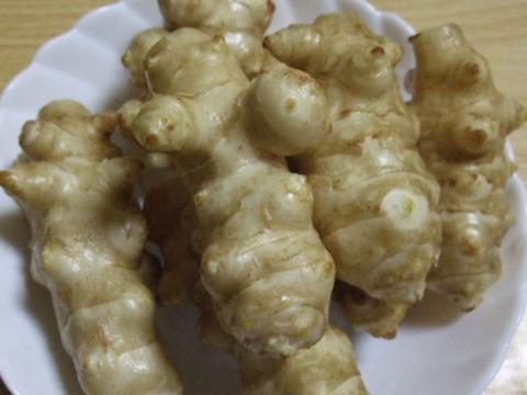 自然農法*大きくて甘い~*菊芋(500g)