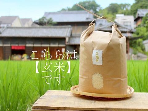 ※10月末頃販売開始【金鵄米/玄米】冷めても美味しいヒノヒカリ きんしまい(5kg)