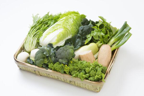 旬のおまかせ野菜セット[Sサイズ]